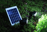 Solar Lighting System SPS3-5W-1C